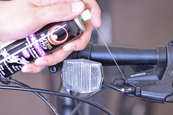 EVERS PRO Carbon Chain Spray, Dry