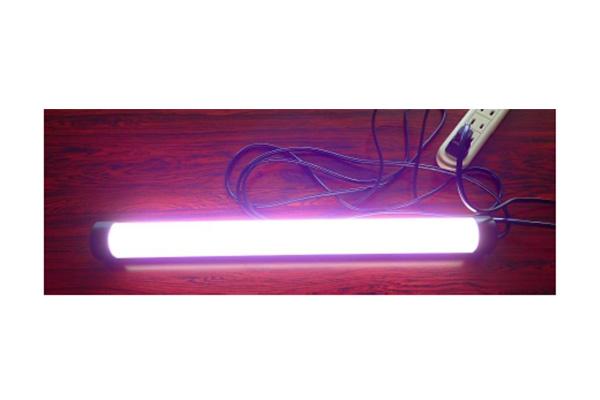 LED ハエクール